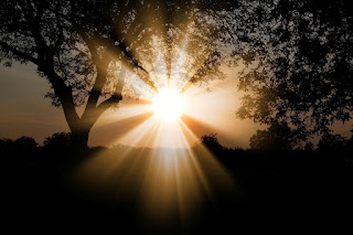 प्रकाश का परावर्तन (Reflection of Light in Hindi)