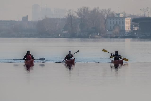 Ruderer auf der Donau, Nussdorf © Chris Zintzen @ panAm productions 2021