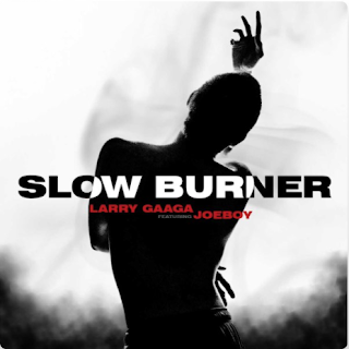 [Audio + Video] Larry Gaaga x Joeboy – Slow Burner