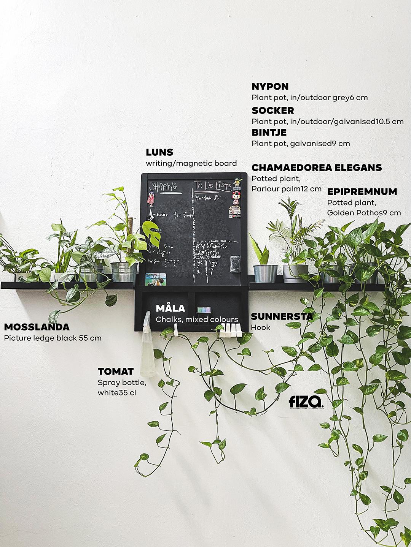 Minimalist Dekorasi perabot IKEA Indoor Plants