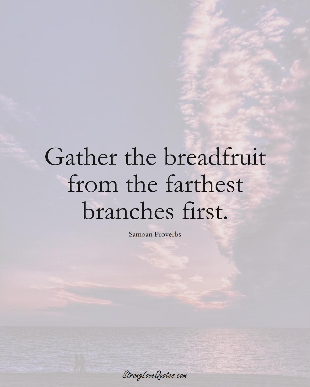 Gather the breadfruit from the farthest branches first. (Samoan Sayings);  #AustralianSayings