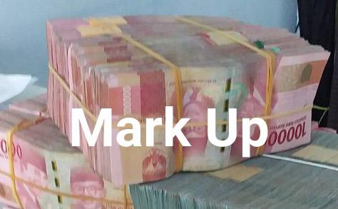 Dugaan Mark Up Proyek Gorden RSUD Zapa Waykanan, Ini Rekanan Pemenangnya