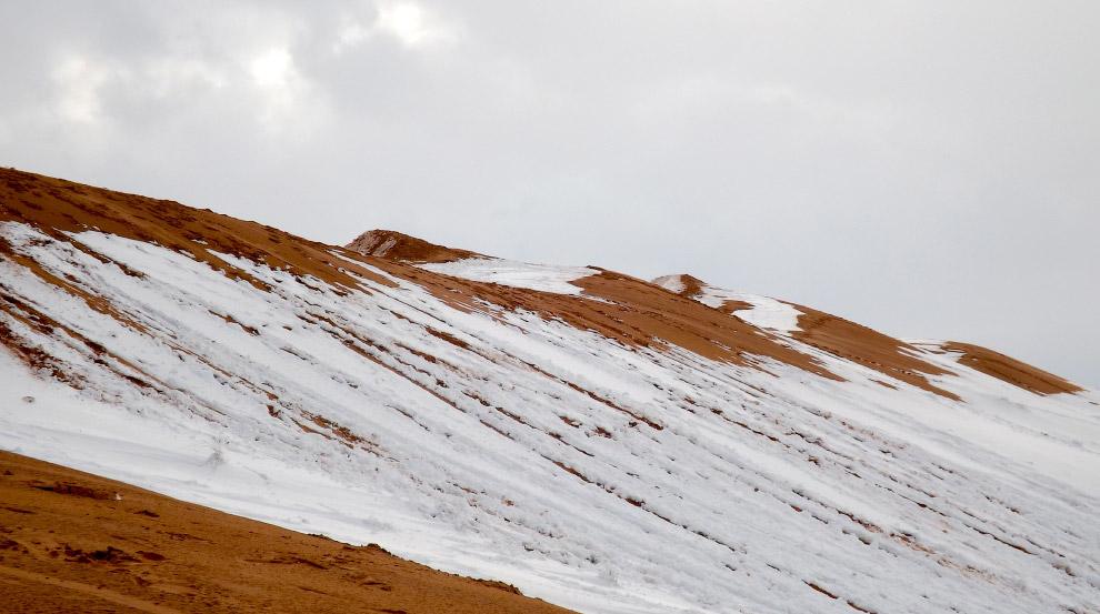В пустыне Сахара выпал снег (8 фото)