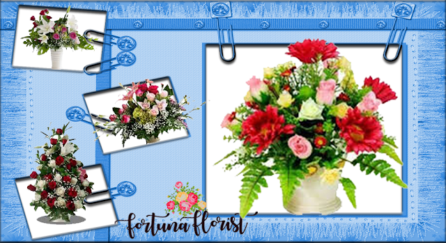 Bunga Papan Tasikmalaya
