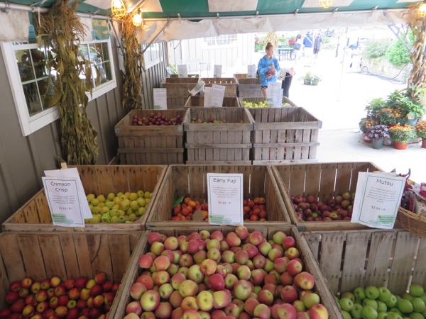 wooden bins filled with different apples