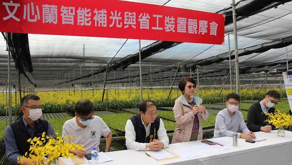 文心蘭智能補光與省工裝置 台中農改場助農民增收益