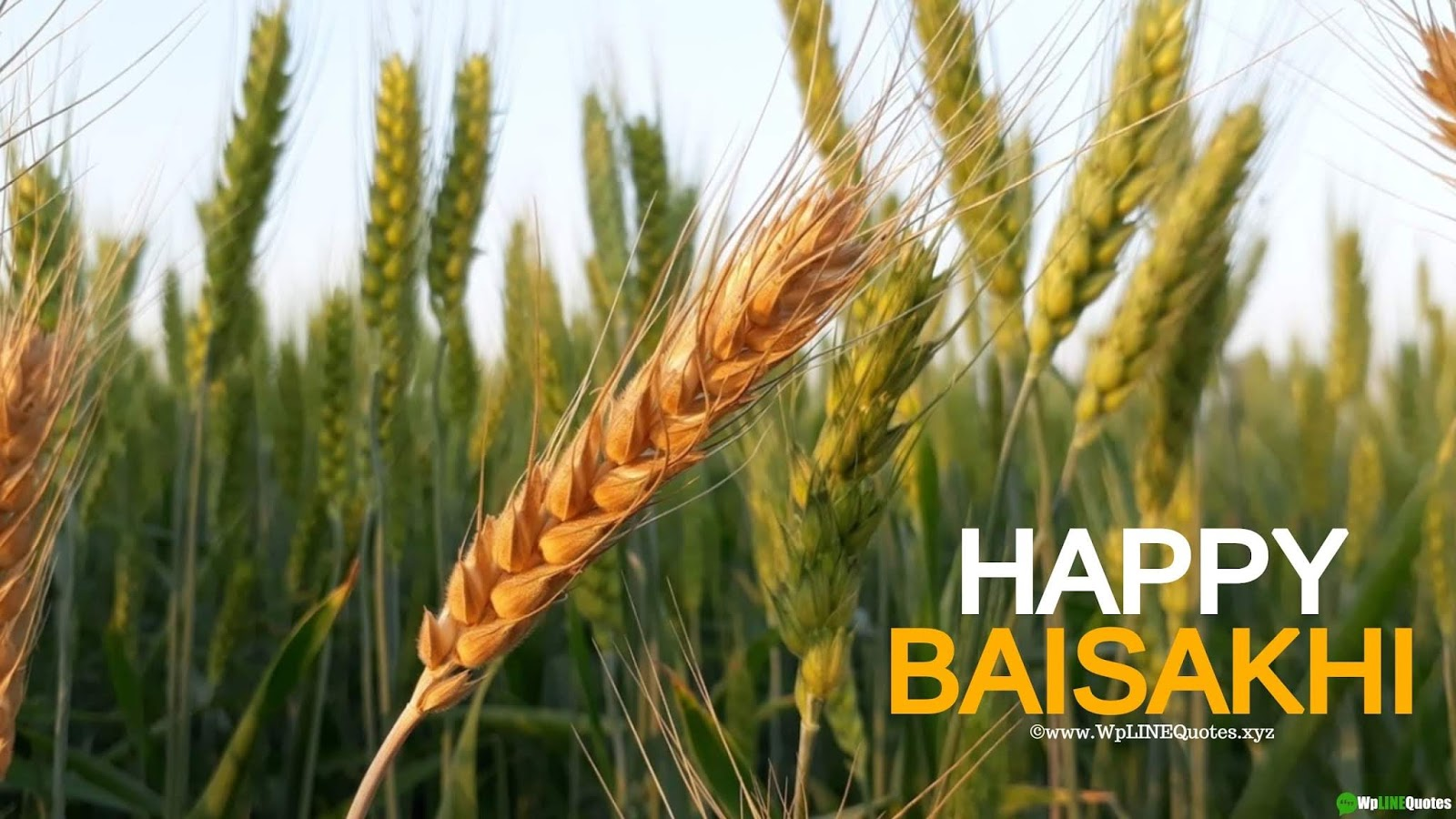 Baisakhi Wishes, Messages & Greetings