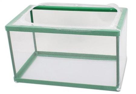 Breeder box for raising guppy fry