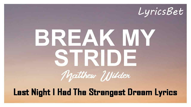 Last Night I Had The Strangest Dream Lyrics