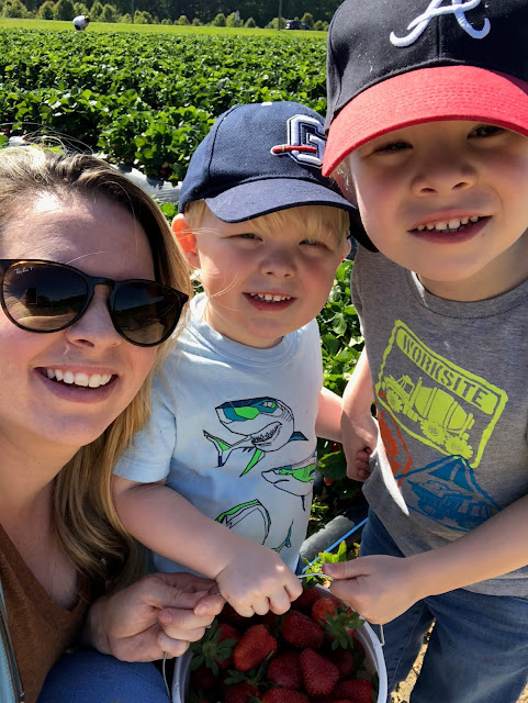 Mom and two boys at strawberry farm