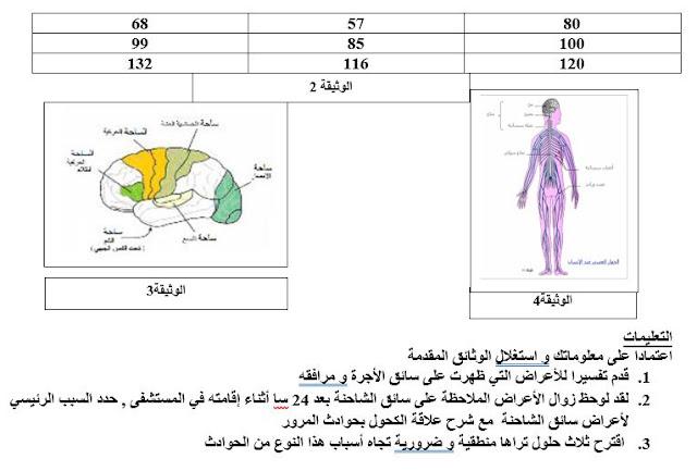 سلسلة من التمارين المختارة للاتصال العصبي لمستوى الرابعة متوسط في العلوم الطبيعية