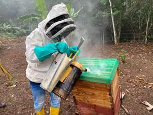 hoyennoticia.com, Cerrejón donó apiario para Hatonuevo