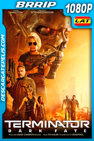 Terminator: Destino oculto (2019) HD 1080p BRRip Latino – Ingles