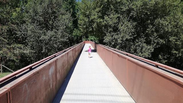 Ponte Pedonal sobre o Rio Ave no Parque das Taipas