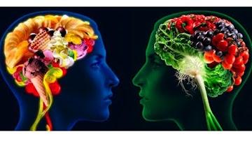 Dieta e saúde mental: revisão revela dietas adequadas para o cérebro
