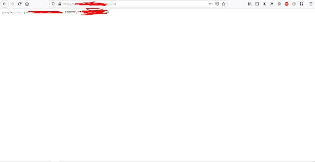 cek hasil install ads.txt
