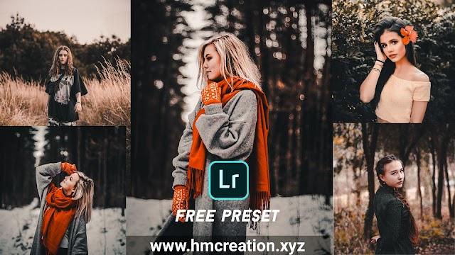 Download free lightroom mobile presets | moody rose gold preset