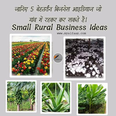 Five Business Ideas For Small Rural : जानिए 5 बेहतरीन बिजनेस आइडियाज जो गांव में रहकर कर सकते हैं।