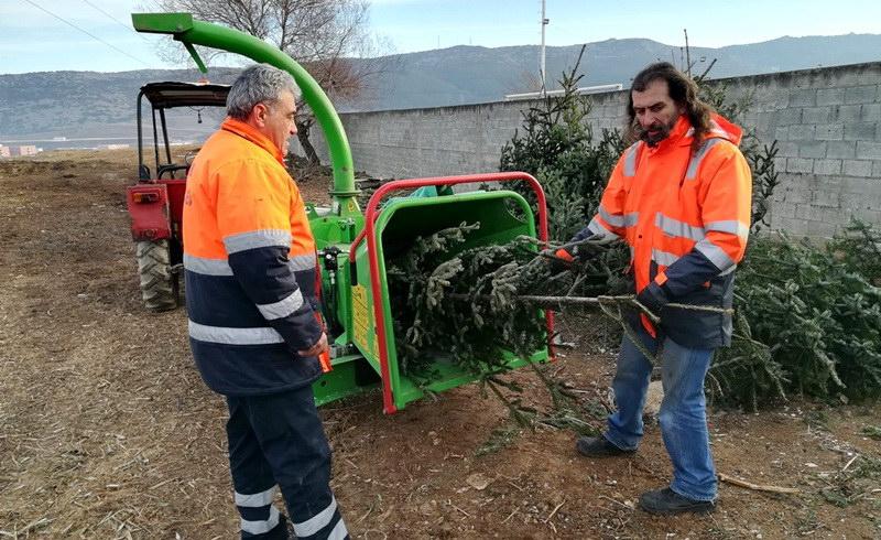 Ανακύκλωση φυσικών χριστουγεννιάτικων δέντρων από το Δήμο Αλεξανδρούπολης