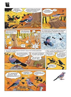 Les oiseaux en BD: le geai des chênes