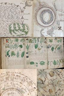Misterul manuscrisului Voynich