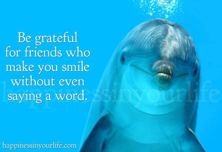 That One Friend Who Makes You Smile Quotes. QuotesGram