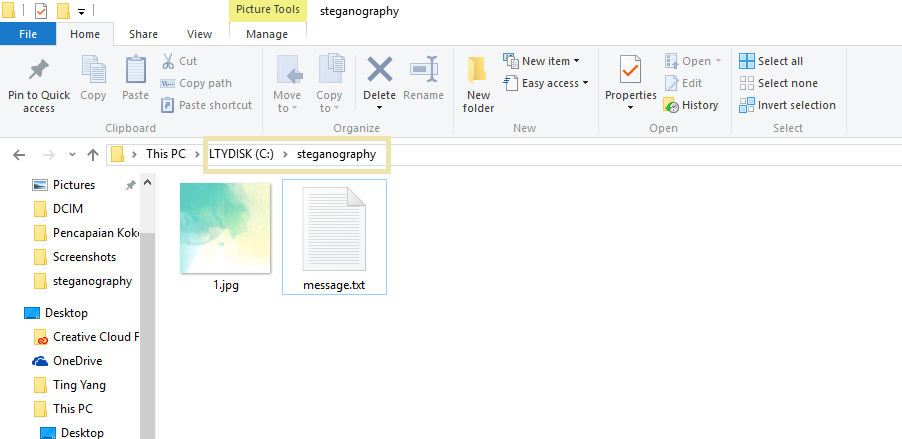 Steganography) How To Hide Messages Behind Images Using Command
