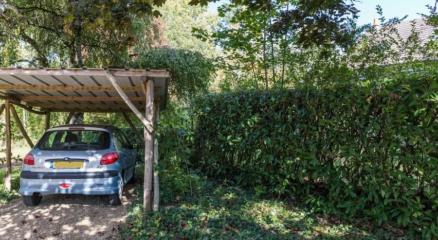 Carport birch