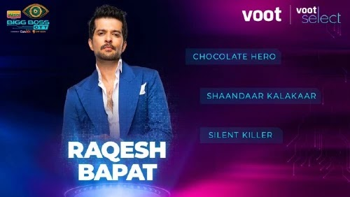 Bigg Boss OTT Contestants Raqesh Bapat