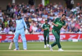 क्रिकेट विश्व कप 2011: प्रमुख टीमें और खिलाड़ी