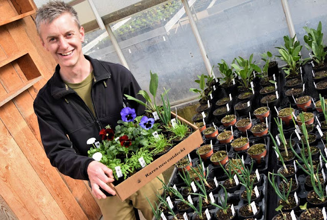 Patrick Biedermann, Geschäftsführer Homatt: «Ich ernte meine eigenen Samen»