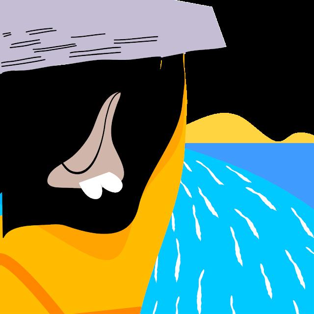 Pirator Island Affinity