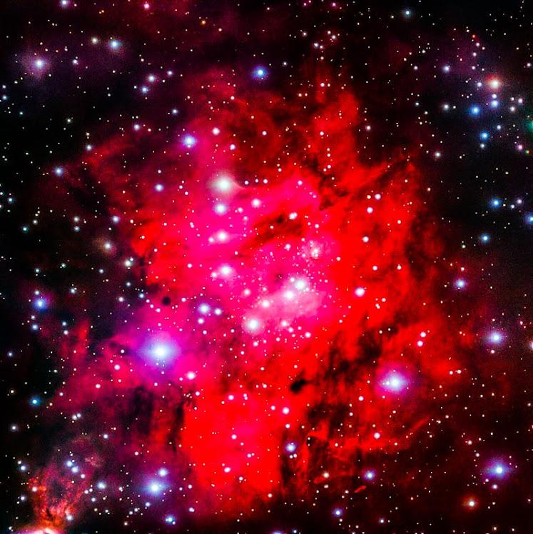 Sh 2-305: uma superbolha estrelada em um dos braços da Via Láctea