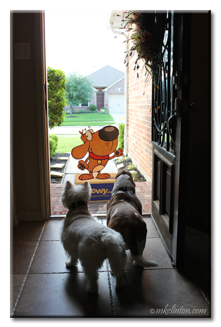 Chewy mascot standing on box at the front door of two dogs' home