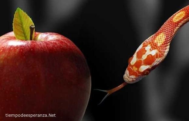 La tentación: La manzana y la serpiente metirosa