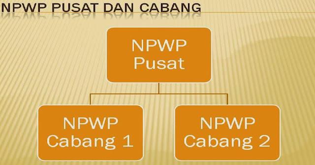 Cara Mengisi Status Pusat - Cabang NPWP