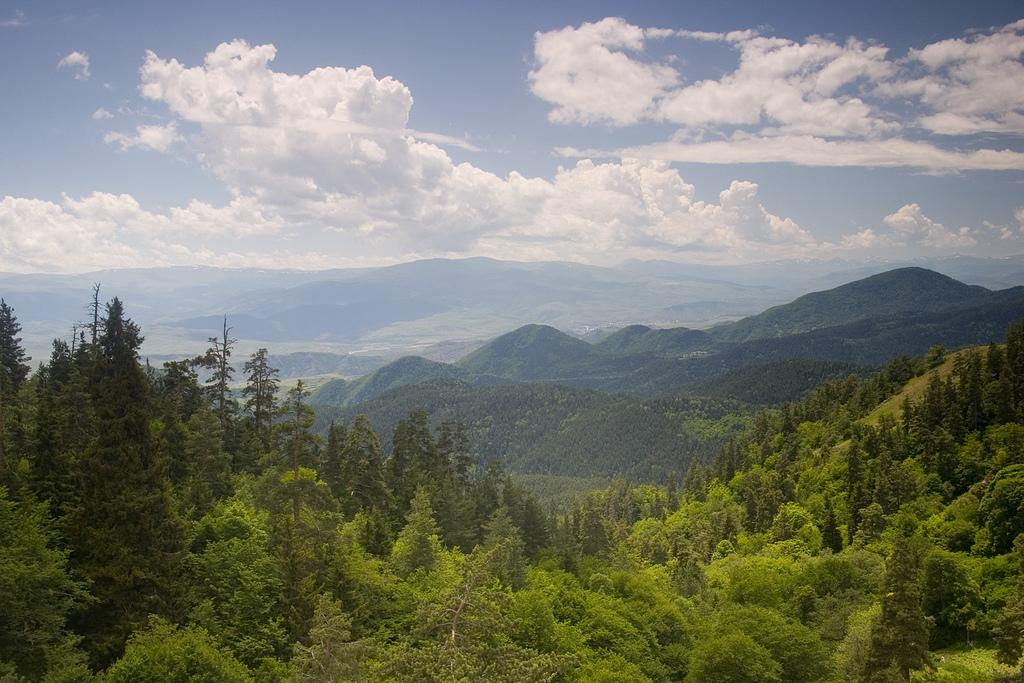 Borjomi-Kharagauli National Park 2