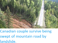 https://sciencythoughts.blogspot.com/2018/05/canadian-couple-survive-being-swept-of.html