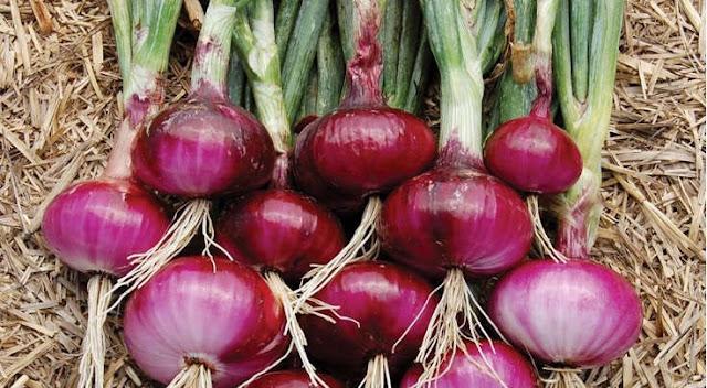 Manfaat Bawang Merah Selain Bumbu Dapur