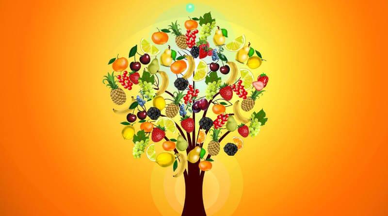 alimentos para comer sano y facil