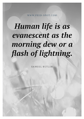 Human life is as evanescent as the morning dew or a flash of lightning. __ Samuel Butler