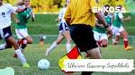 Ukuran Gawang: Tinggi dan Lebar Gawang Sepakbola