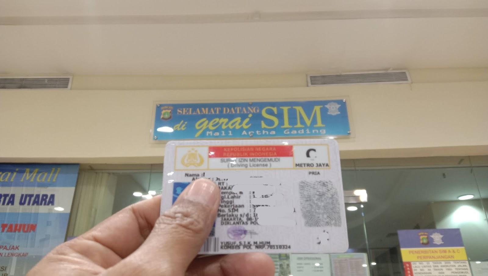 SIM Model Lama