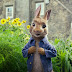 Review | Peter Rabbit | 2018