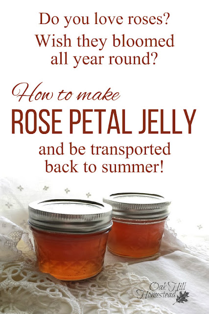 How to make rose petal jelly and remember the beauty of summer no matter what time of year it is.