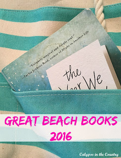 Great Beach Books 2016 - Fun books to read this summer!