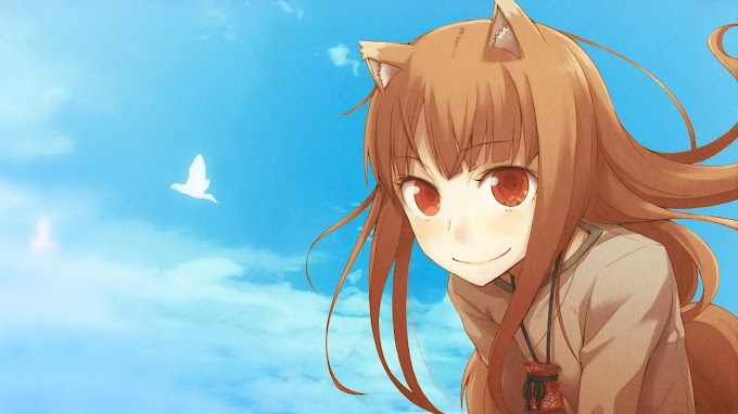 Spice and Wolf Holo