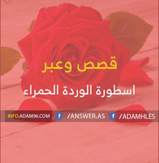 قصة اسطورة الوردة الحمراء - رمز الحب