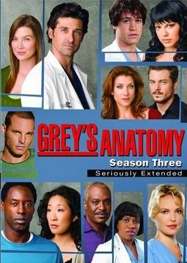 Baixar Grey's Anatomy 3ª Temporada Dublado
