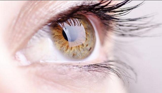 14 Fakta Menarik tentang Mata untuk Pengetahuan Anak-Anak